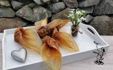 Rinder - Ohren mit Muschel Deutsche Herkunft 10 Stück